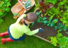 a-girl-plant-vegetables-on-her-vegetable-home-garden-to-get-healthy-and-fresh-vegetables