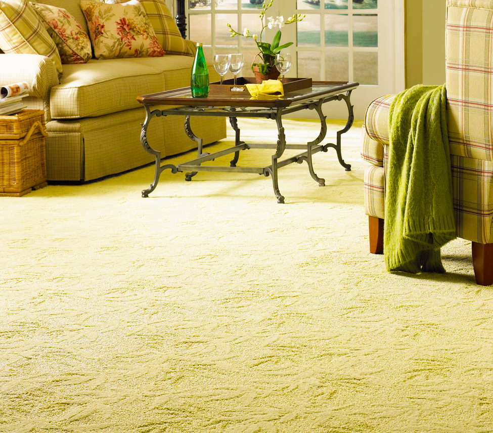 Floor Rugs And Living Room Carpet Tiles In