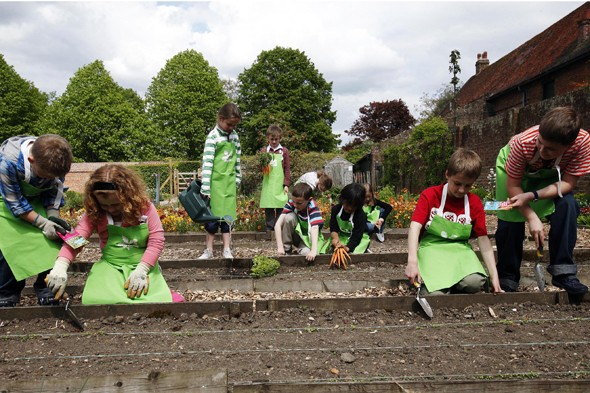 novice-gardeners-for-best-place-for-a-vegetable-garden-for-kids-how-to-plant-a-vegetable-home-garden