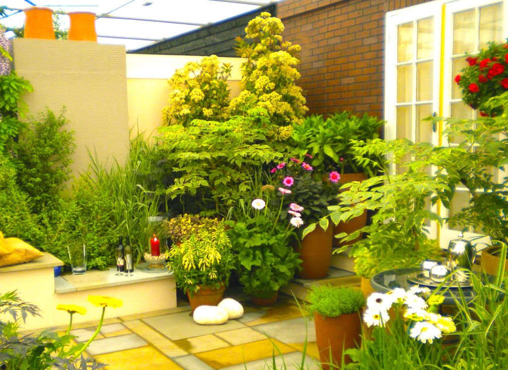 small-garden-is-the-best-home-improvements-and-innovative-home-improvements