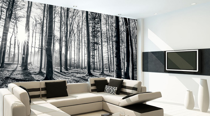 Wall Covering Ideas Black And White Forest Wallpaper