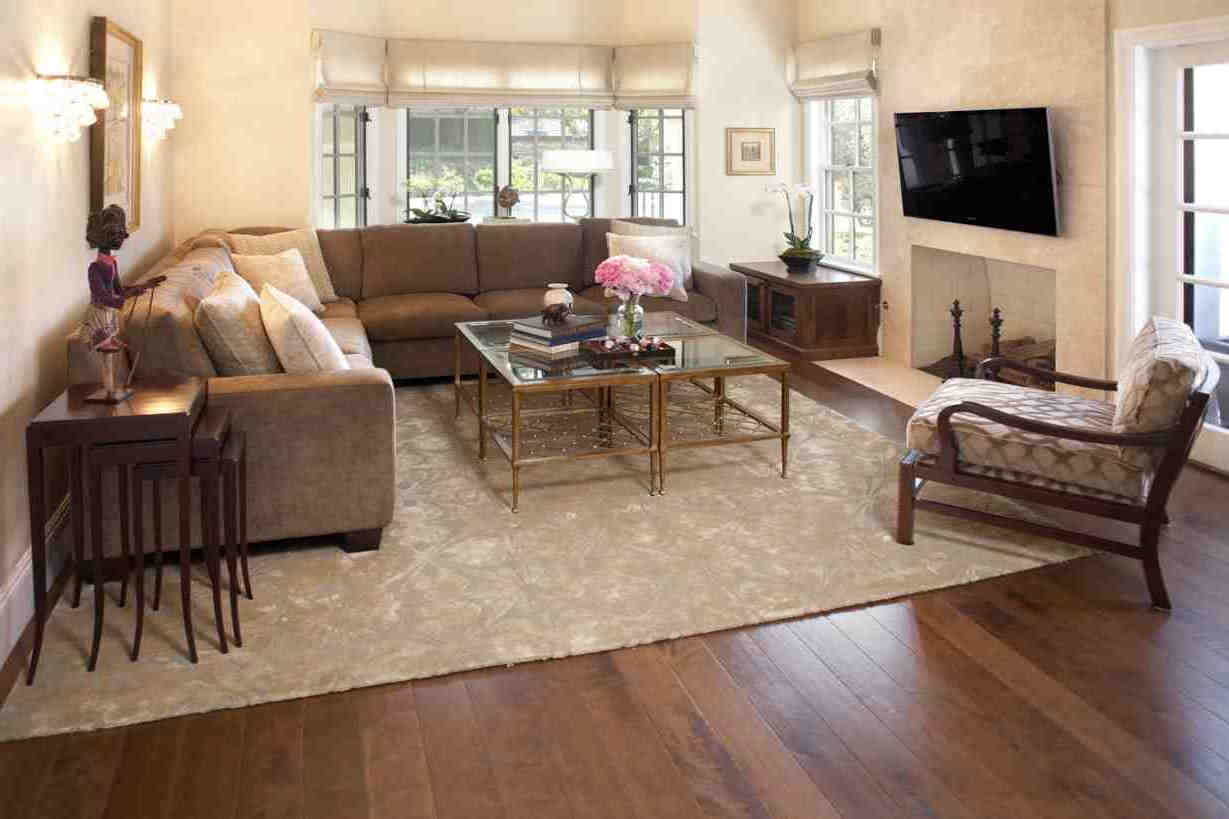 Rugs For Cozy Living Room Area Rugs Ideas Roy Home Design