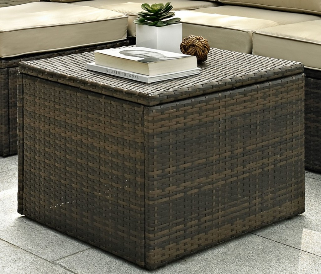 trunk coffee table target 16