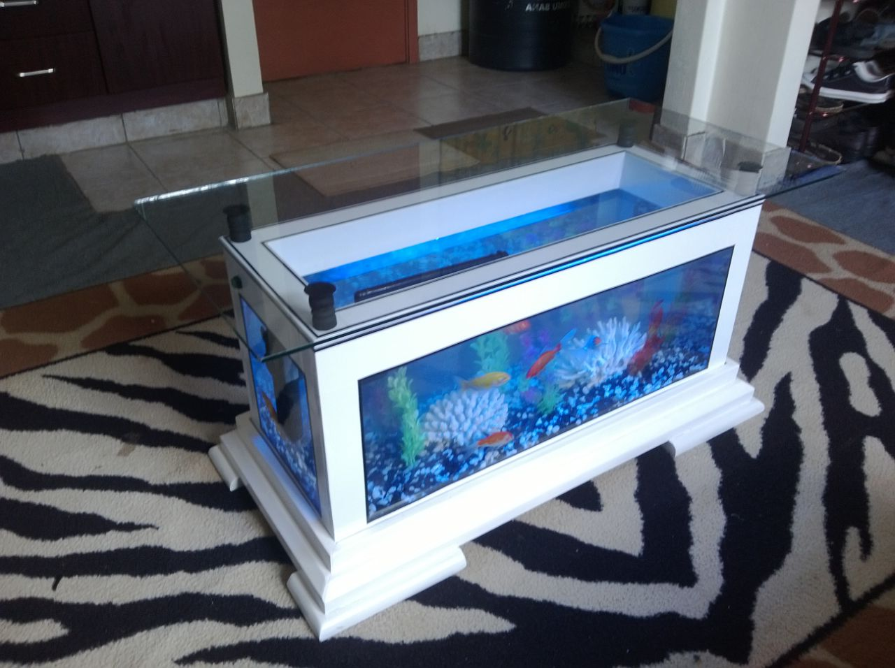Columns For Sale >> Aquarium Coffee Table For Sale | Roy Home Design