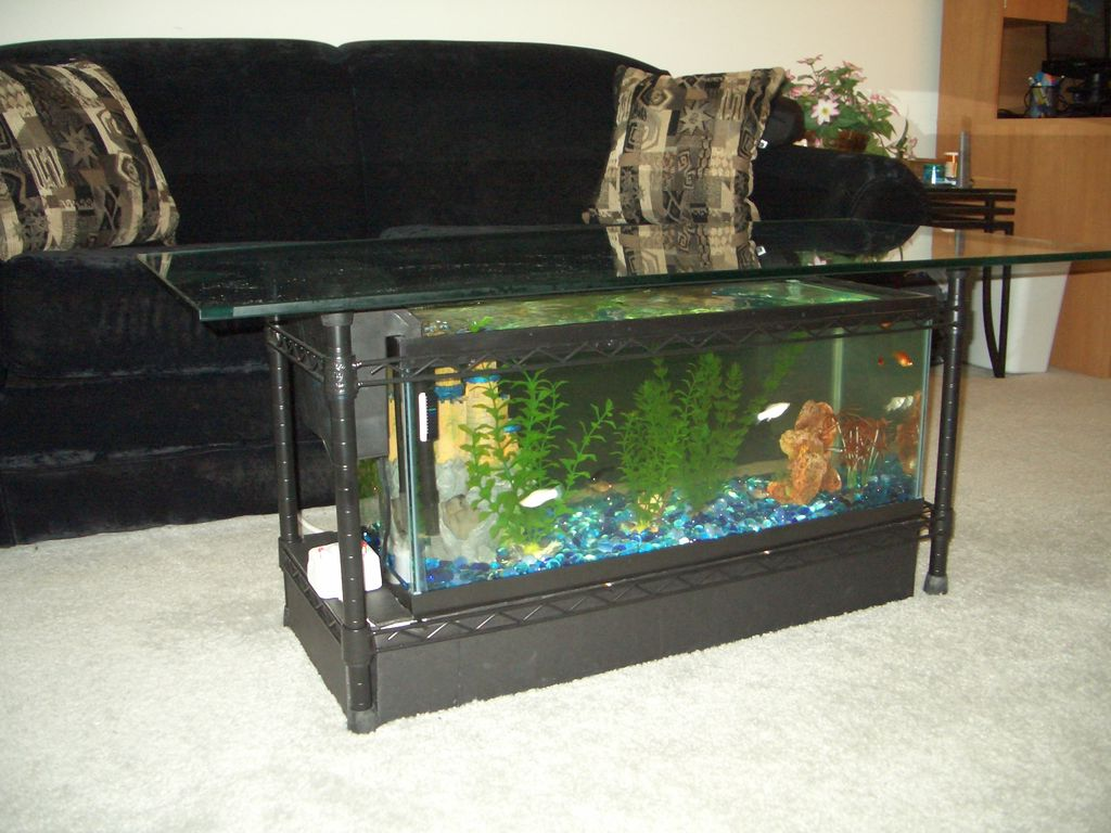 aquarium coffee table for sale 12