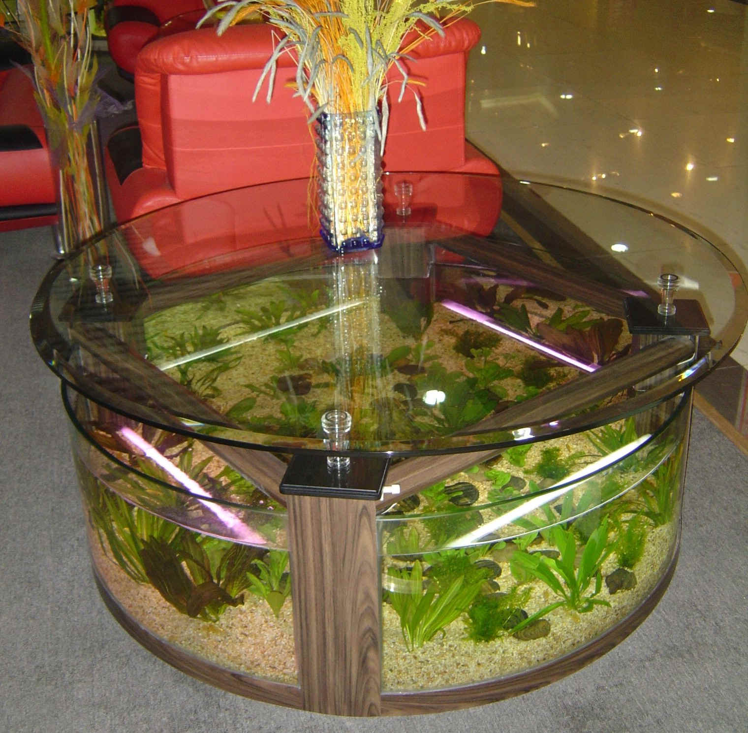 aquarium coffee table for sale 16