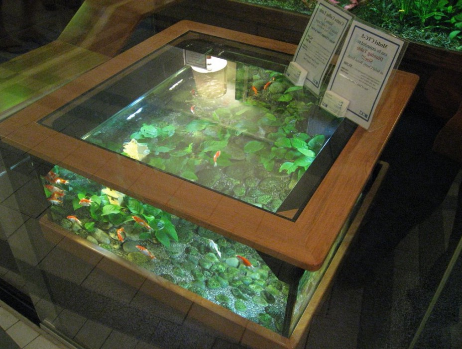 coffee table aquarium for sale 01