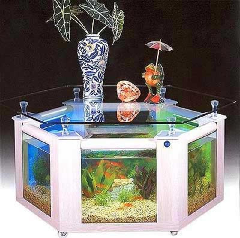 coffee table aquarium for sale 03