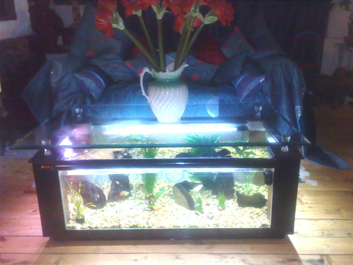coffee table aquarium for sale 06