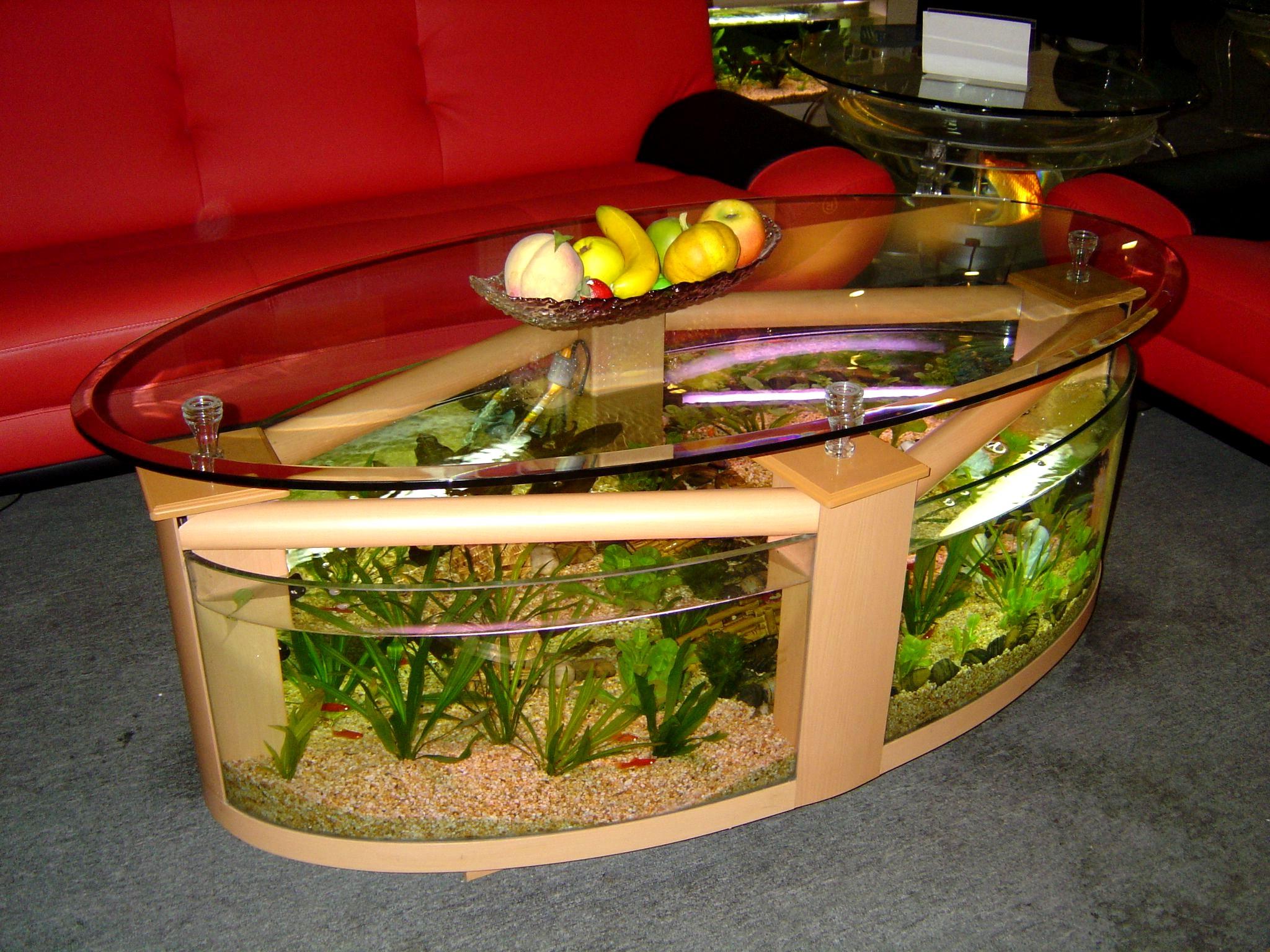 coffee table aquarium for sale 09