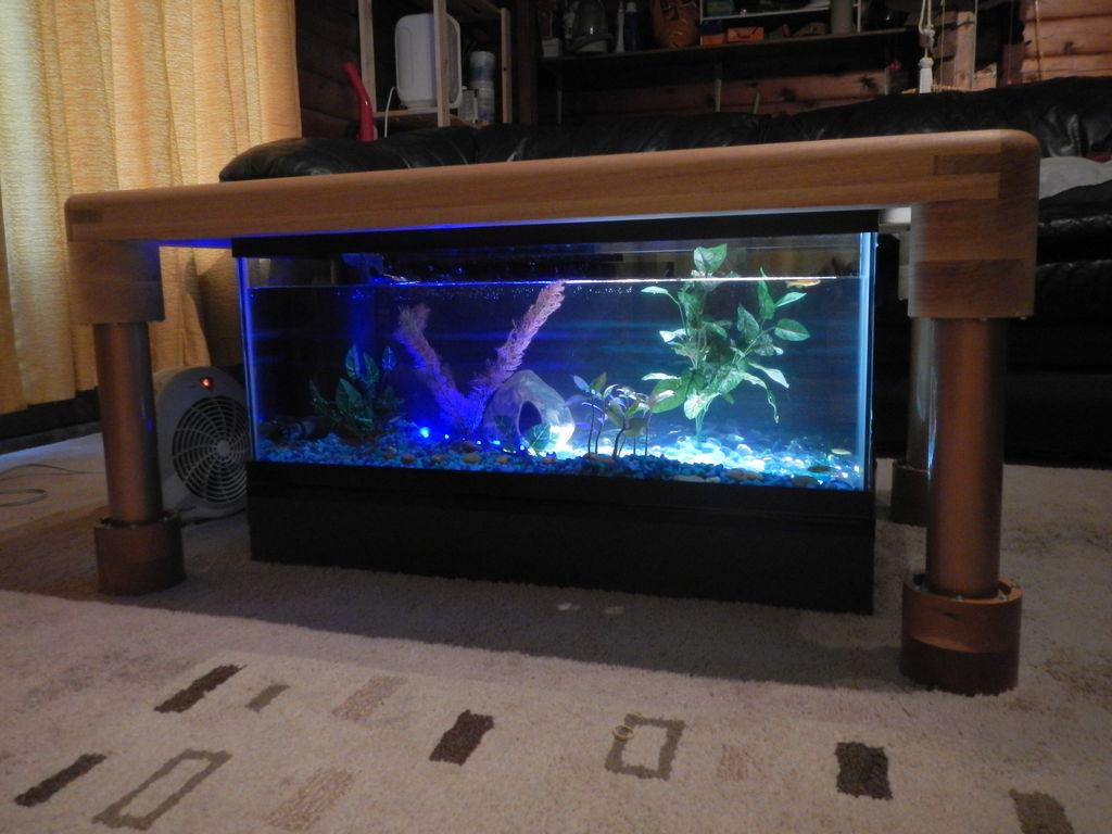 coffee table aquarium for sale 10