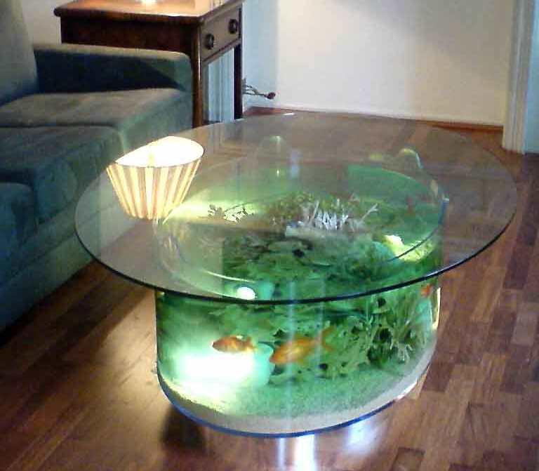 coffee table aquarium for sale 12