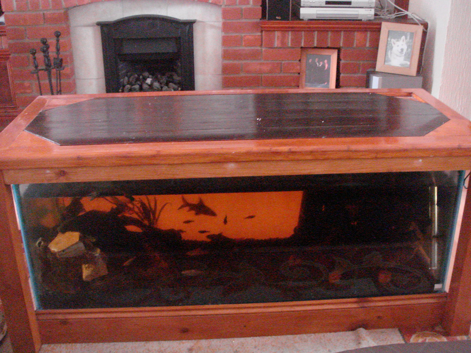 coffee table aquarium for sale 13
