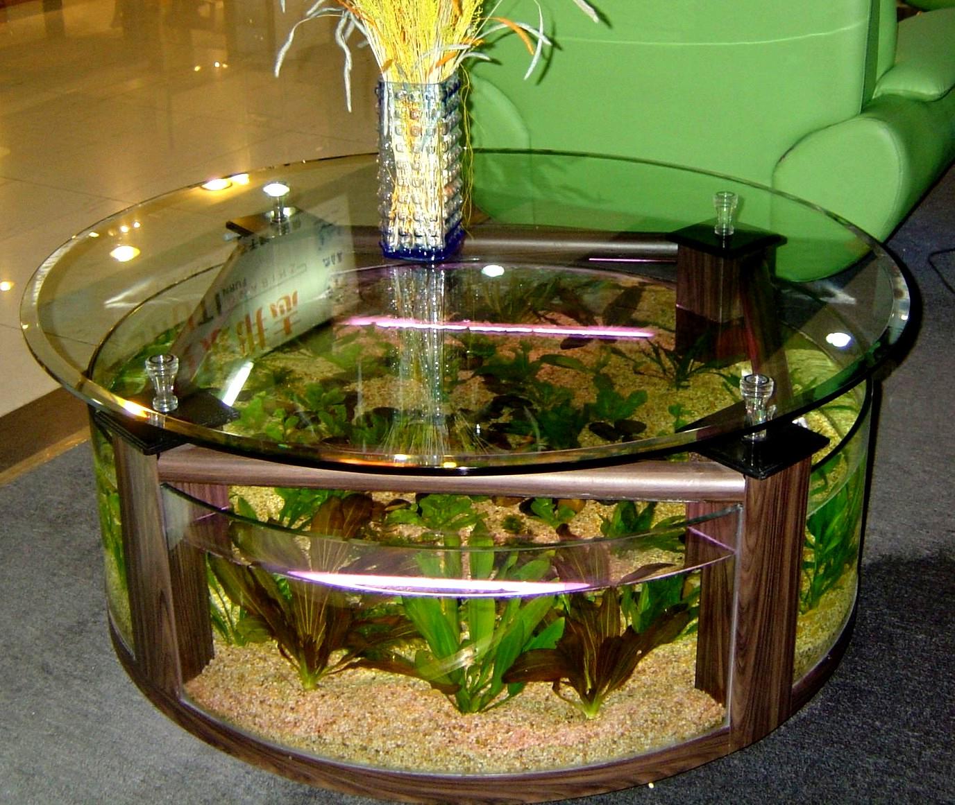 coffee table aquarium for sale 14