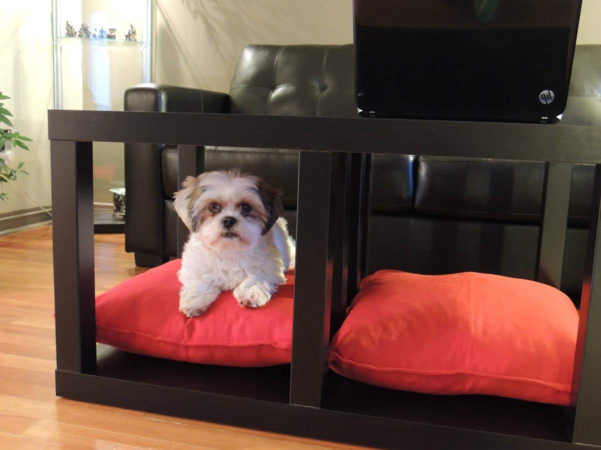 coffee table dog bed 03