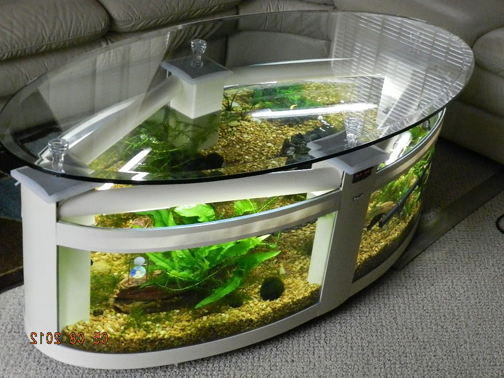 Fish tank coffee table for sale roy home design - Fish tank dining room table ...