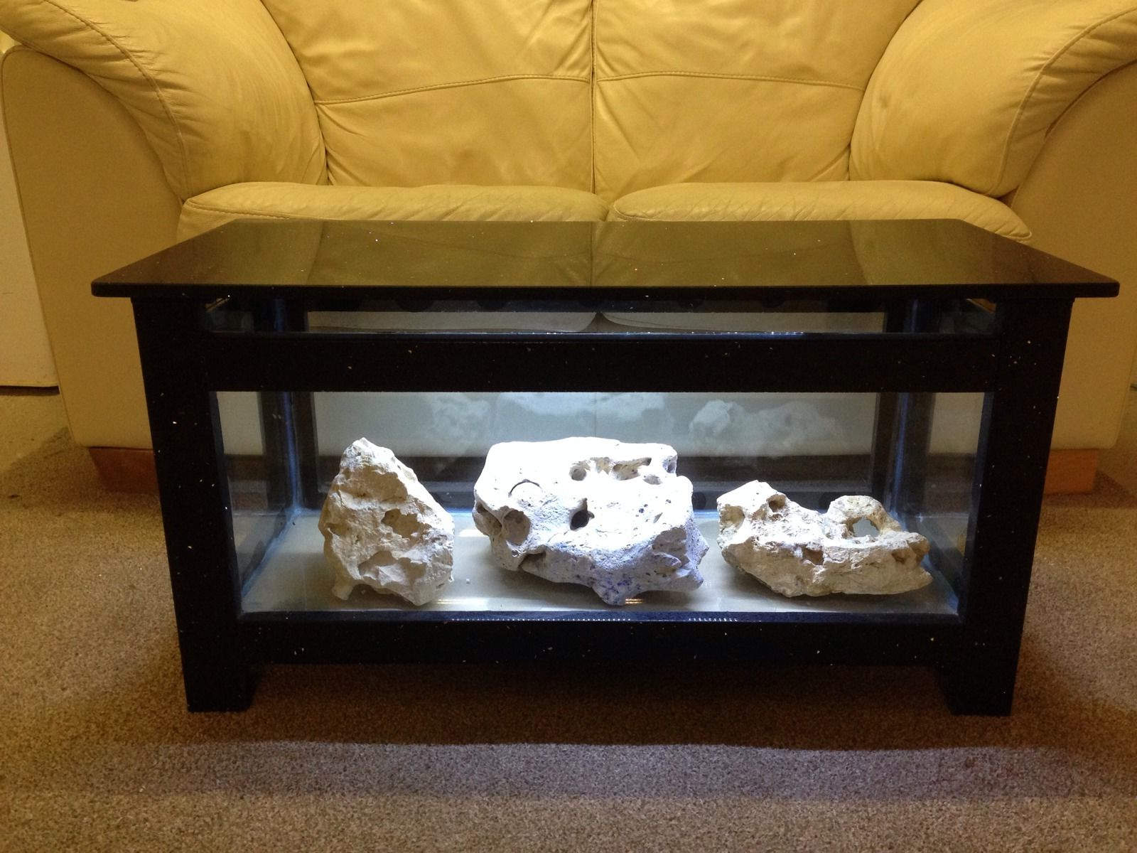 fish tank coffee table for sale 07