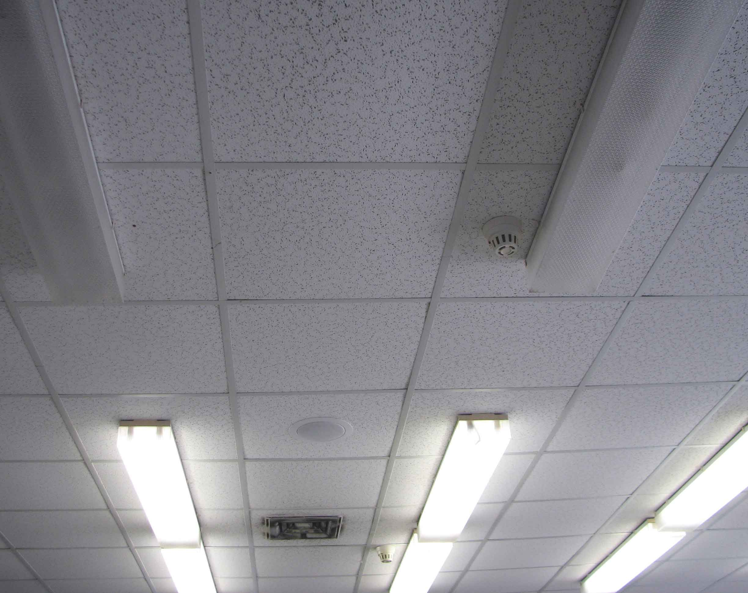 What Are The Different Types Of Ceiling Materials For Home? | Roy Home Design