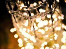 The 3 Replacement Christmas Tree Light Bulbs Types You Can Get | Roy Home Design