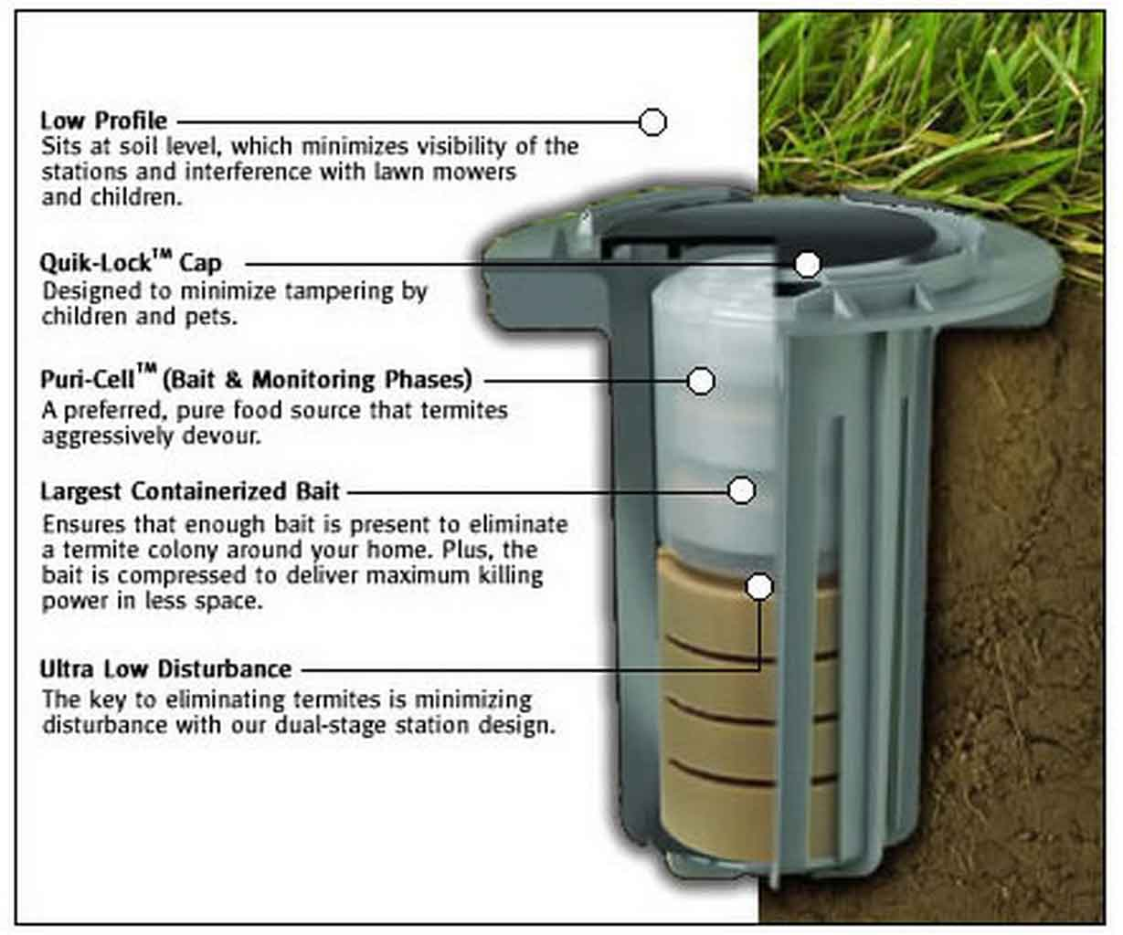 Baiting System, a Major DIY Termite Control You Can Try At Home | Roy Home Design