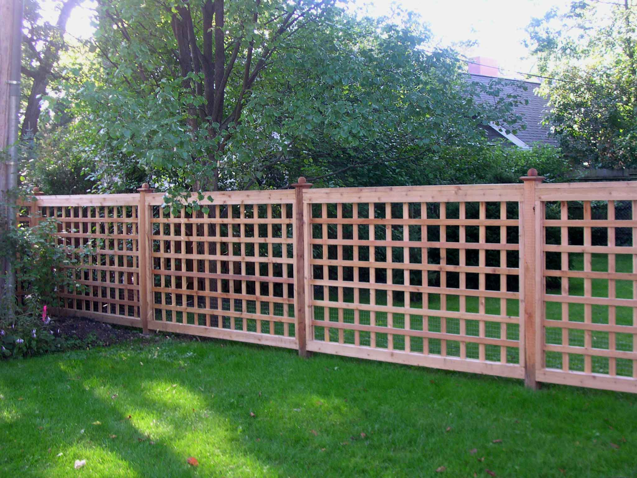 Cheap Easy Dog Fence NZ