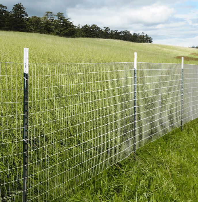 Cheap Easy Dog Fence Wire Options