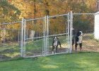 Cheap Fence Ideas For Dogs Large That Dig