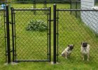 Cheap Fence Ideas For Dogs Run That Dig