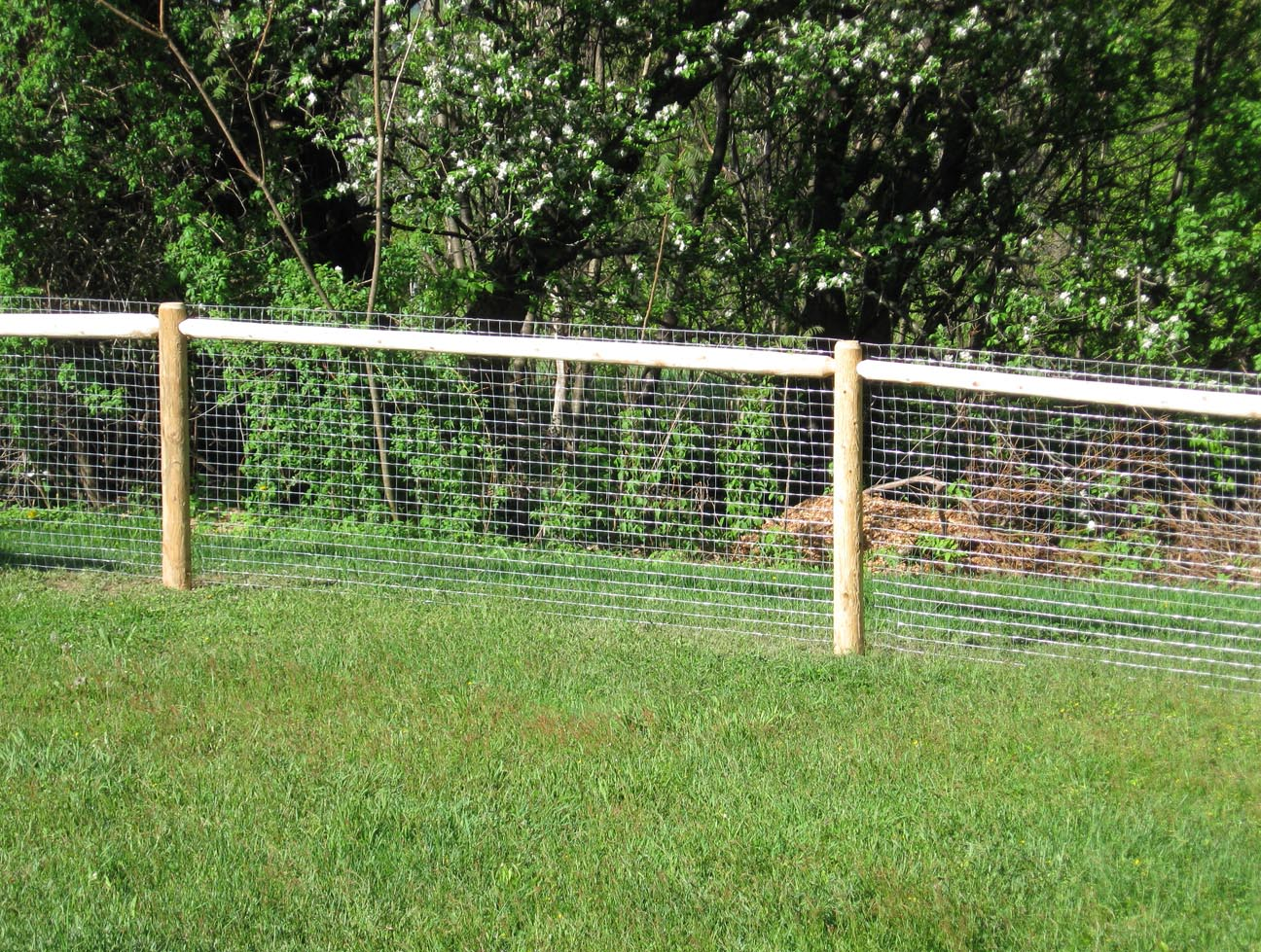 Cheap Fence Ideas For Dogs That Dig
