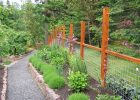 Cheap Fence Ideas For Dogs UK