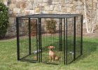 Dog Fences Outdoor