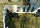 Dog Fences Outdoor Home Depot