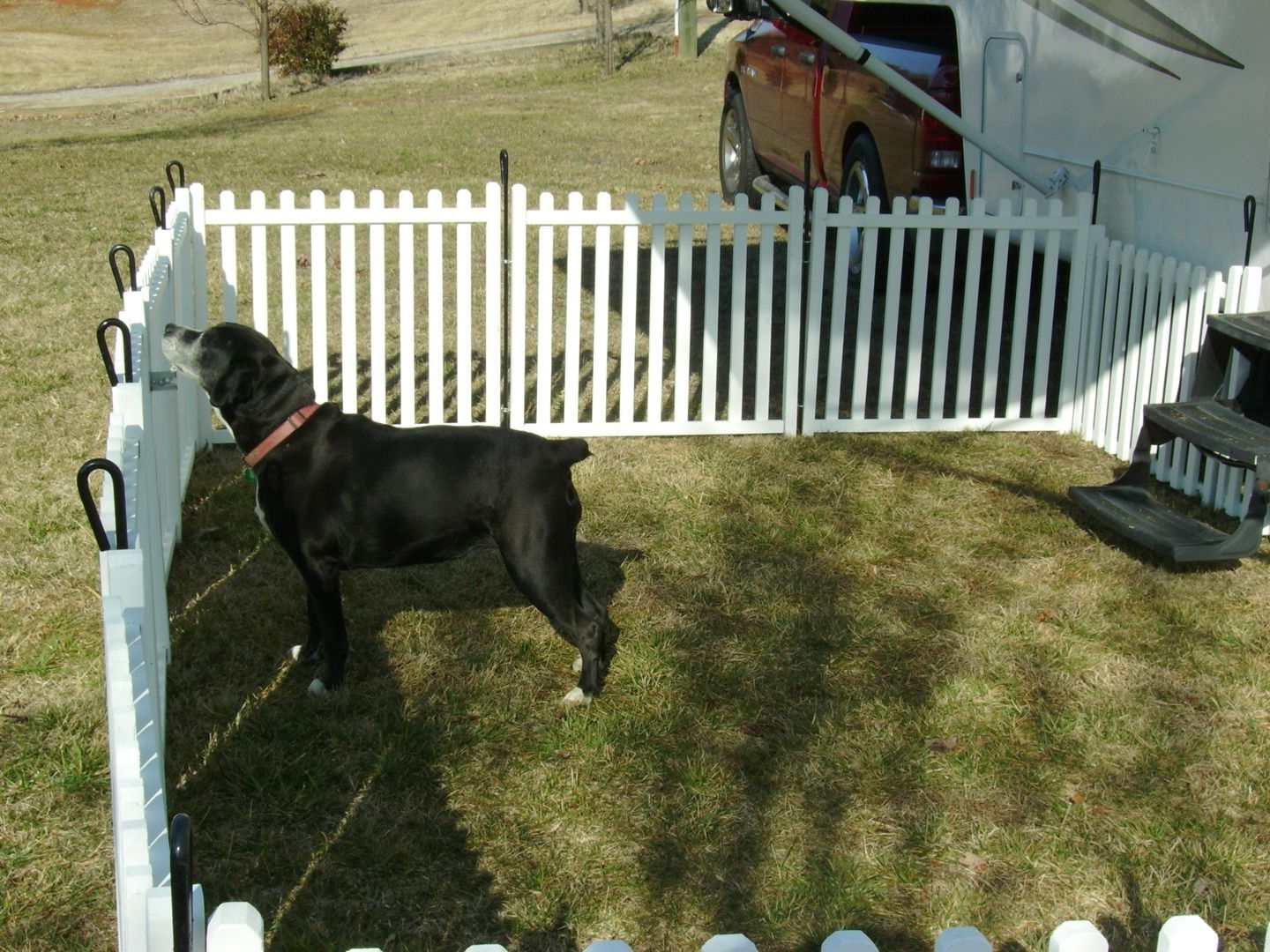 Dog Fences Outdoor Home Depot