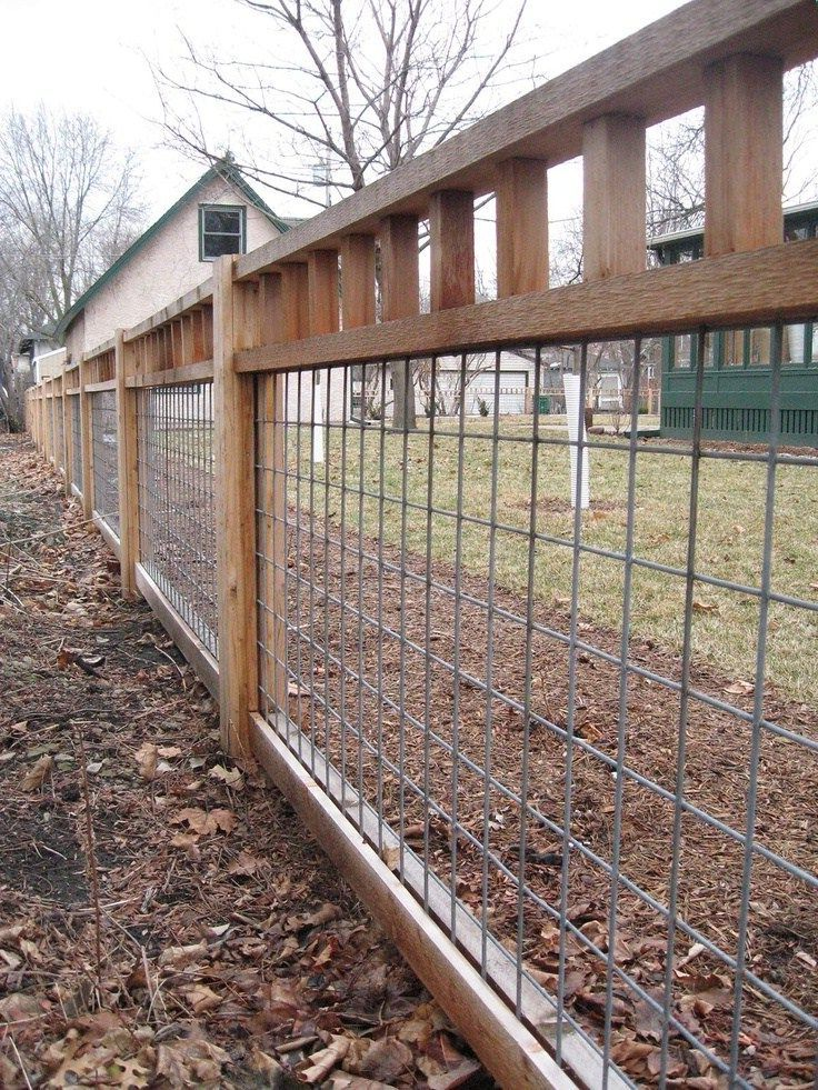 Dog Fences Outdoor DIY To Keep Your Dogs Secure | Roy Home ...