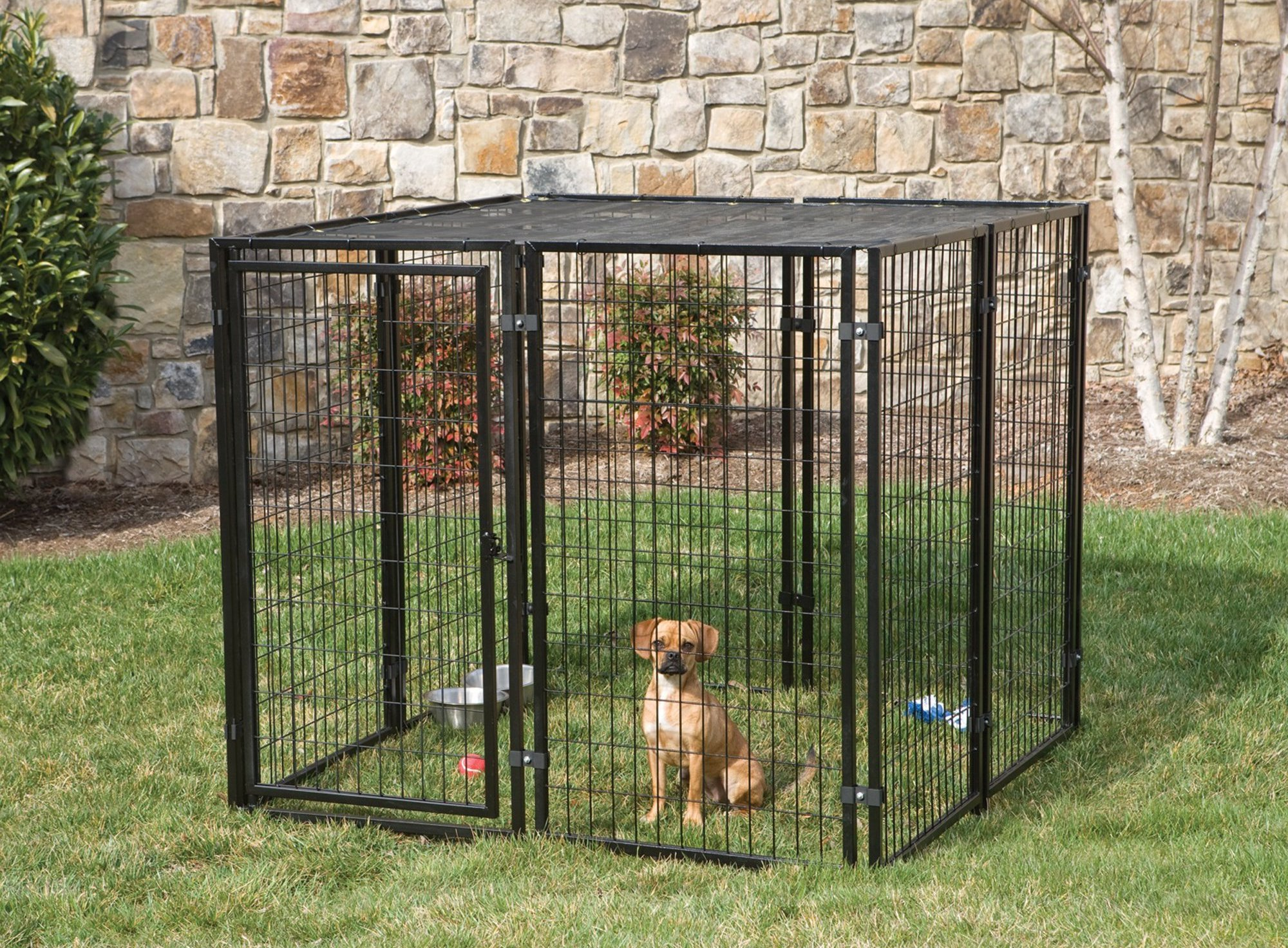 Dog Fences Outdoor