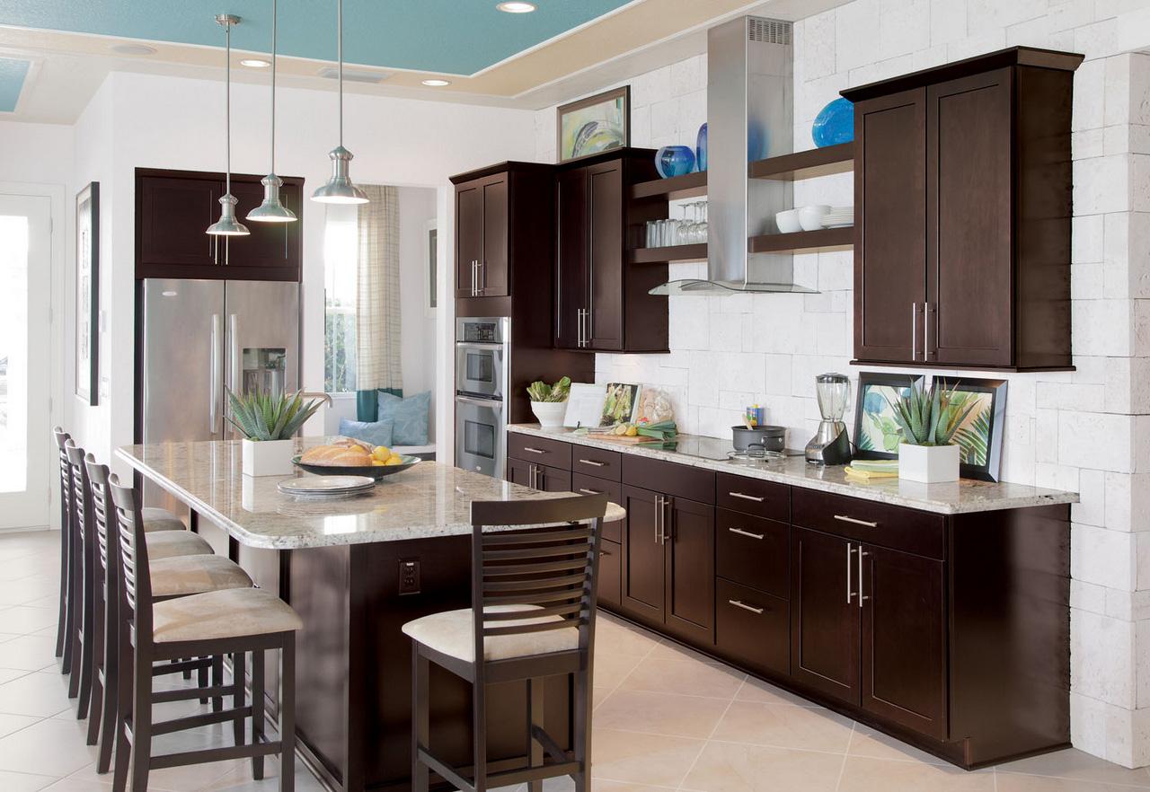 Espresso-Kitchen-Cabinets-dark kitchen cabinets design