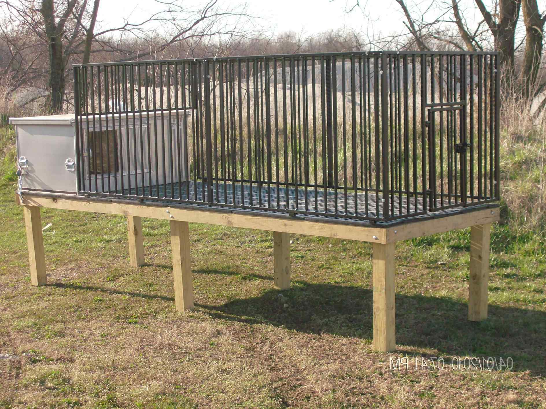 Portable Fencing For Dogs Cost