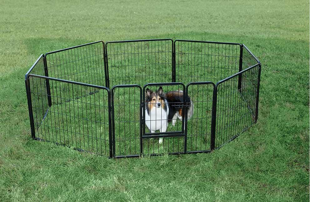 Portable Fencing For Dogs Temporary UK