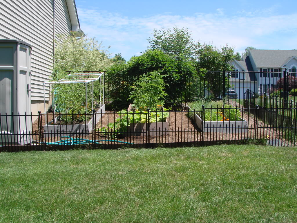 Temporary Dog Fence Ideas Affordable