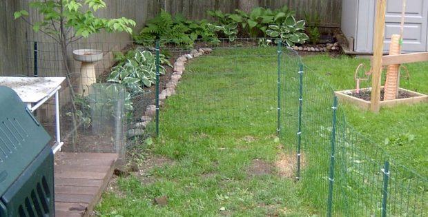Backyard Dog Fence Ideas temporary dog fence ideas bars | roy home design