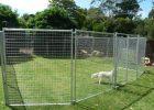 Temporary Dog Fence Ideas Build