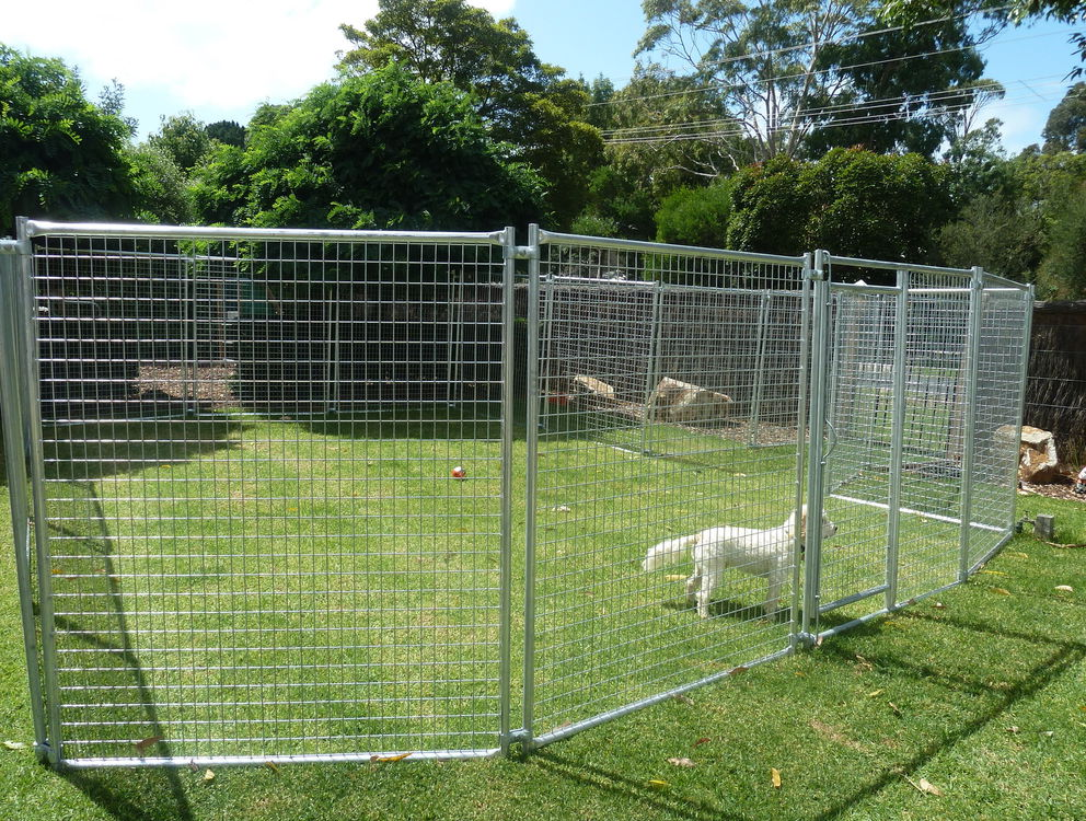 Temporary Dog Fence Ideas With 5 Type Easy Dog Fence | Roy ...