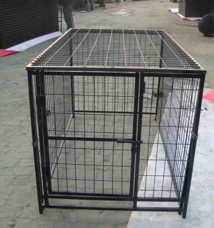 Temporary Dog Fence Ideas Canberra