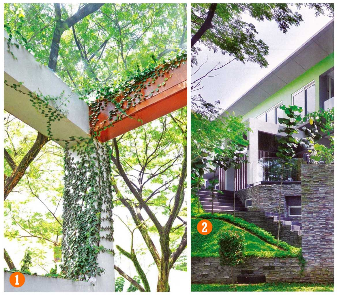 3 Carport Design For Car Shelter And Pergola Ideas | Roy Home Design