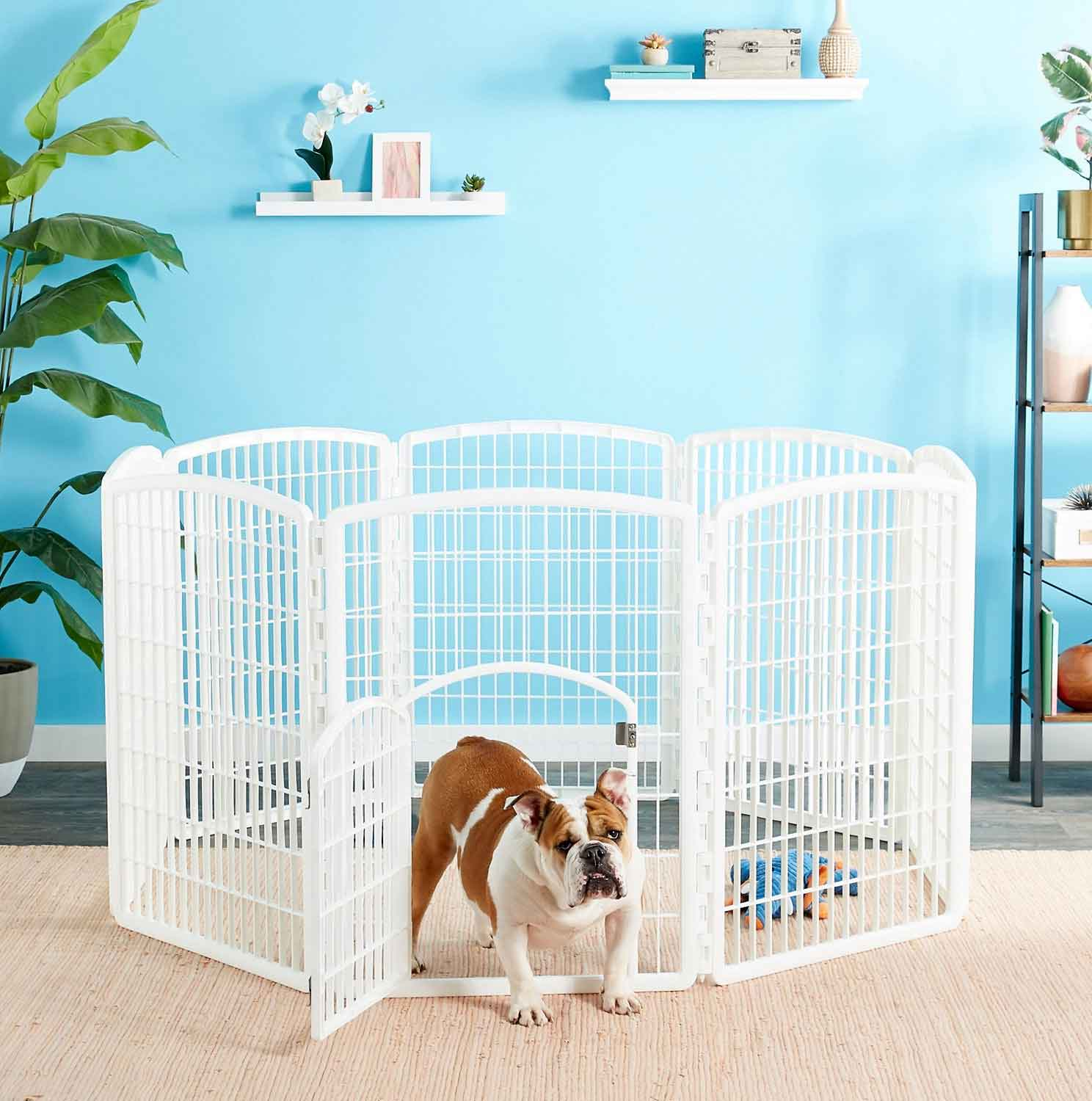 5 Indoor-Outdoor Simple And Cheap Fencing For Dogs | Roy Home Design