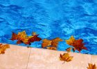 what is the average cost to build a swimming pool how much is to build a swimming pool