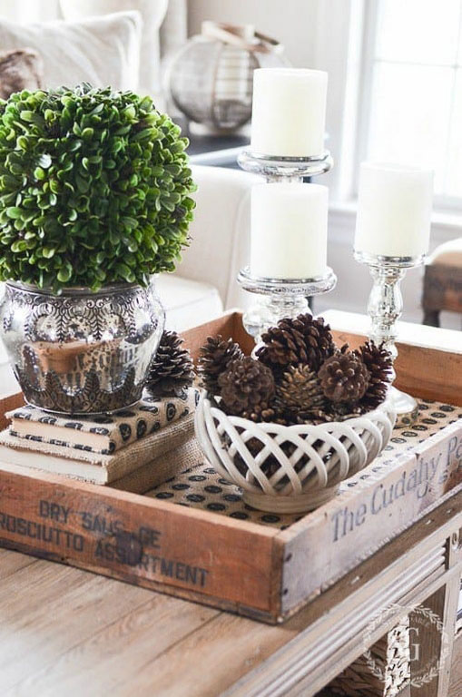 Tips and Trick to Set Trendy Coffee Table Centerpiece | Roy Home Design
